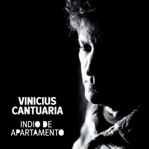 Vinicius Cantuaria - Indio de appartemente - Naive