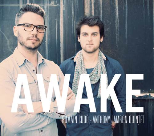 Romain Cuocq et Anthony Jambon - Awake