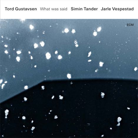Tord Gustavsen - What we said